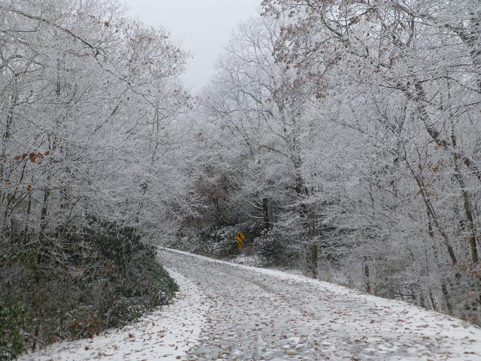Snowvember MON
